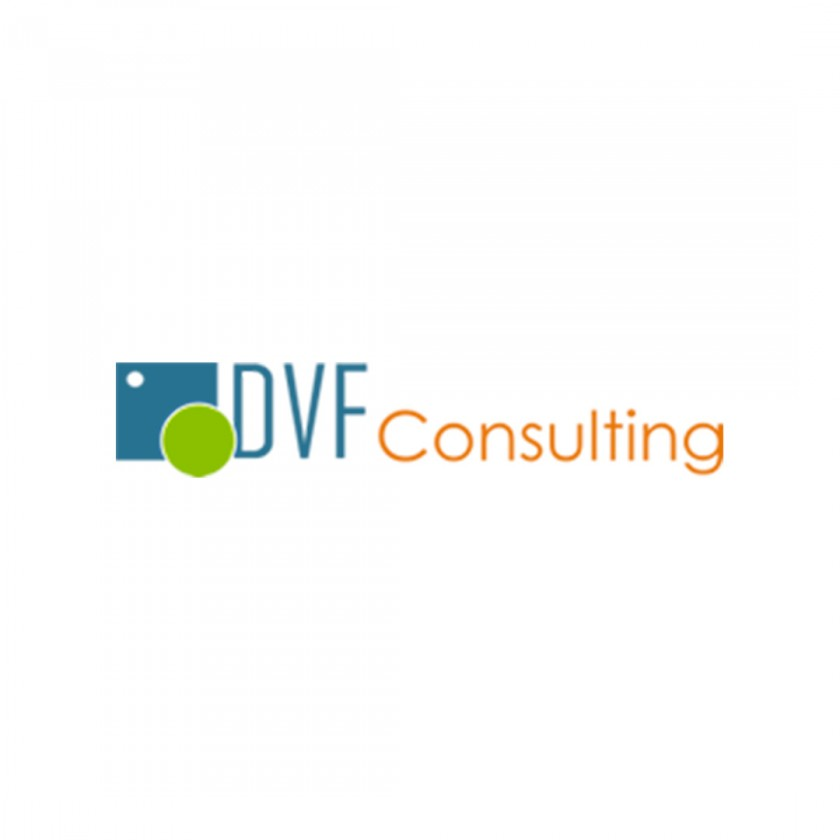 DVF CONSULTING S.r.l